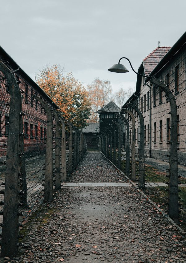 Visiting Auschwitz – How to Not be a Dick