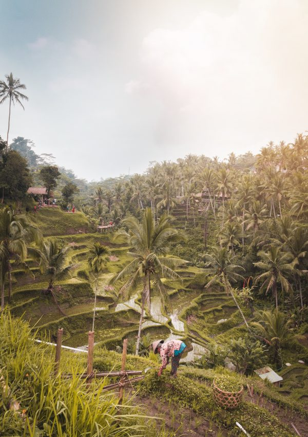 The Ultimate Bali Itinerary – 2 Weeks in Bali