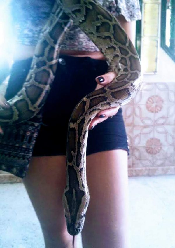 Visiting the Snake Temple in Penang, Malaysia