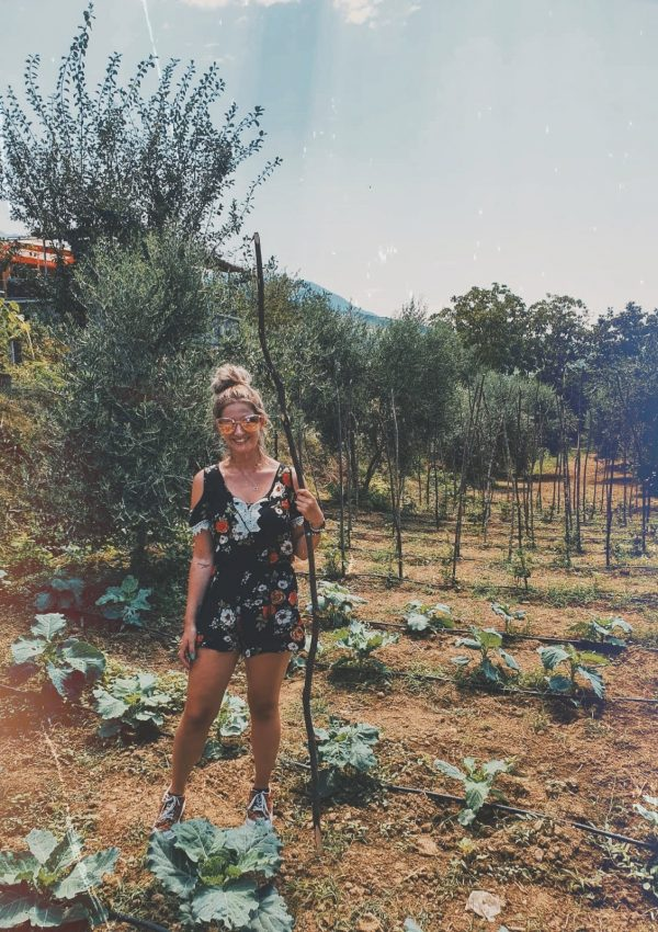 Albanian Wine and I – An Unlikely Love Story